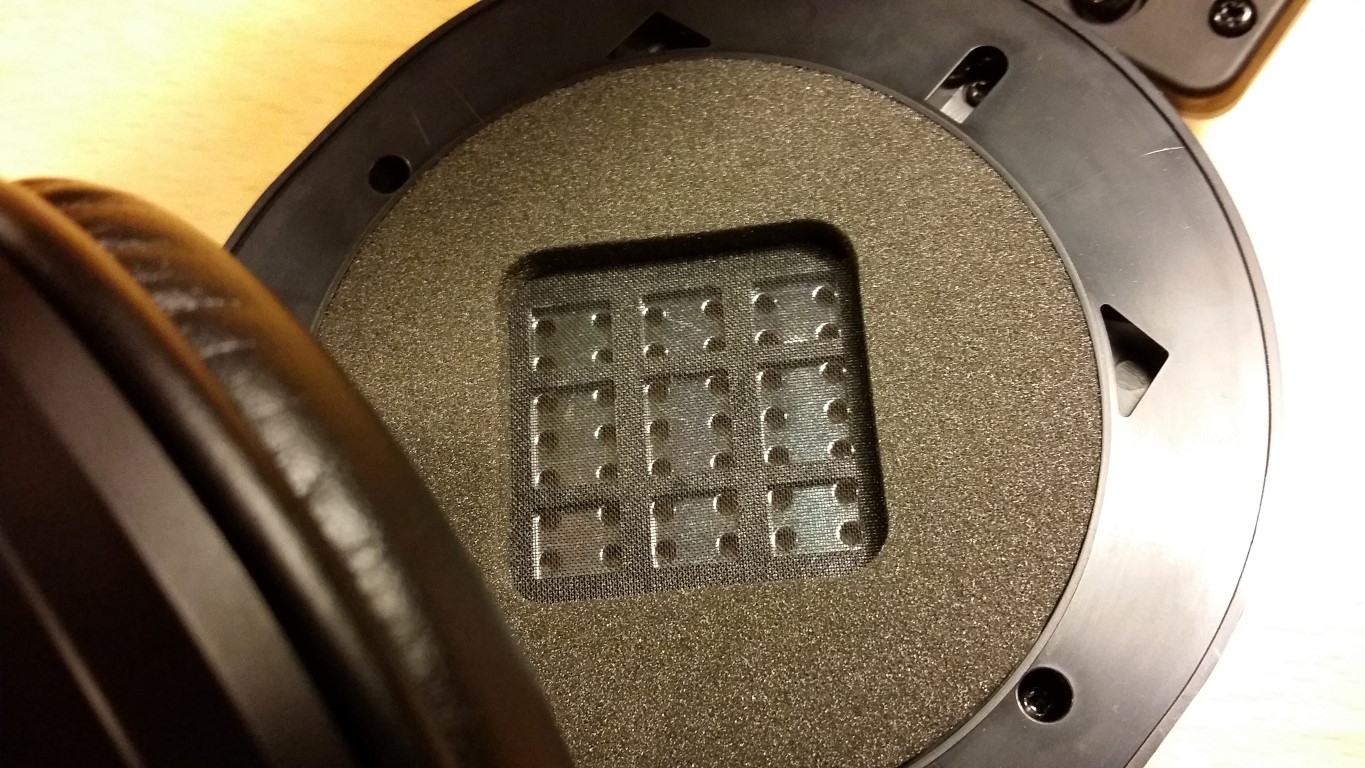 Fostex inside (Medium)